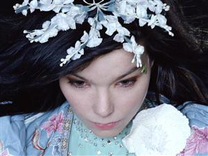 Bjork Screensaver Sample Picture 3