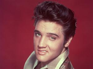 Elvis Presley Screensaver Sample Picture 3