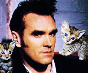 Free Morrissey Screensaver Download