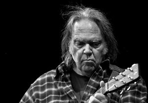 Free Neil Young Screensaver Download