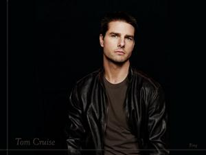 Tom Cruise Screensaver Sample Picture 1